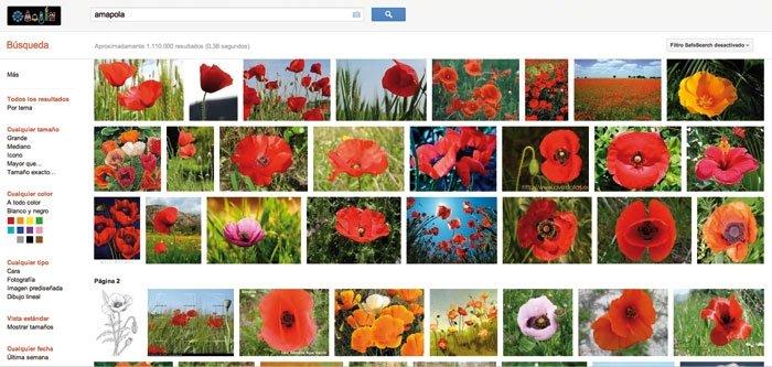 Algoritmo Google Guía 6