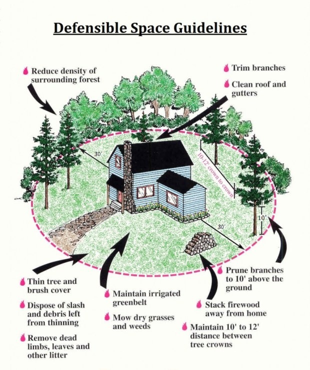 Defensible Space Guidelines
