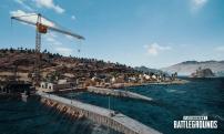 PlayerUnknown's Battlegrounds (5)