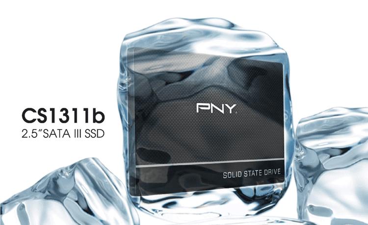 CS1311b-PNY-Technologies
