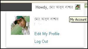 WordPress blog site profile photos add