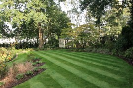 Planting in Ascot