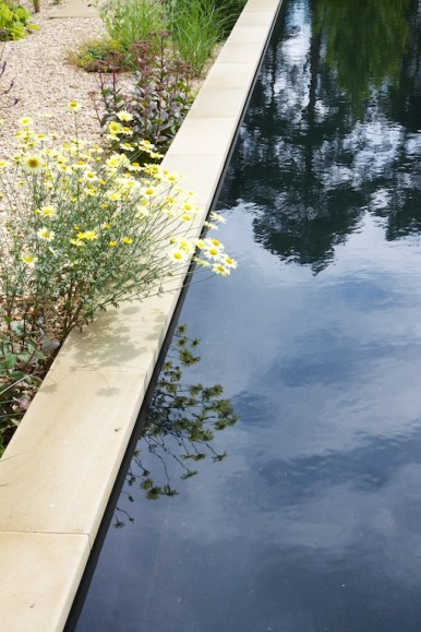 Planting by water