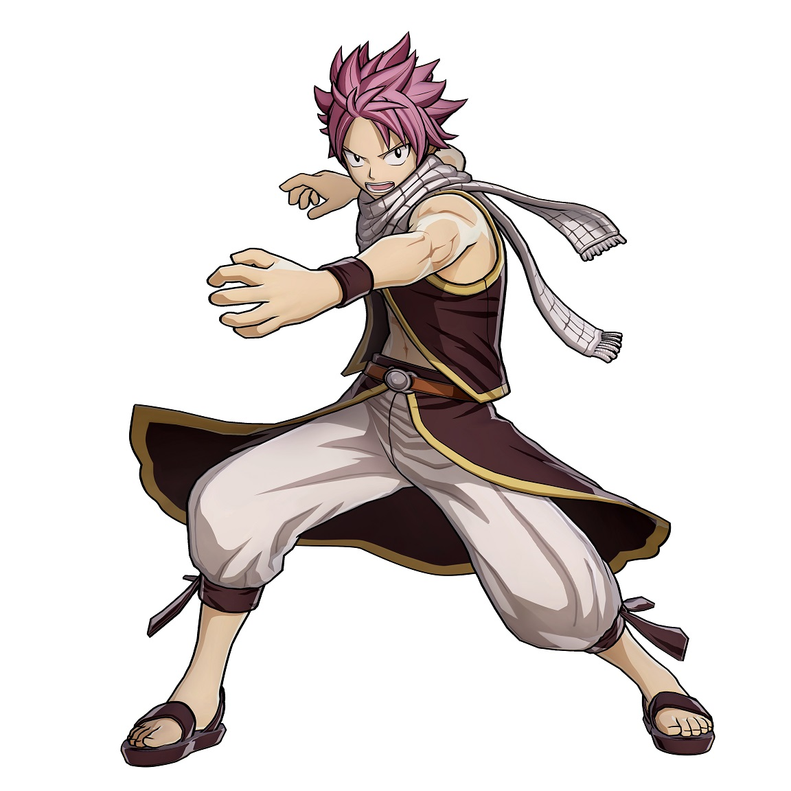 Fairy Tail Natsu