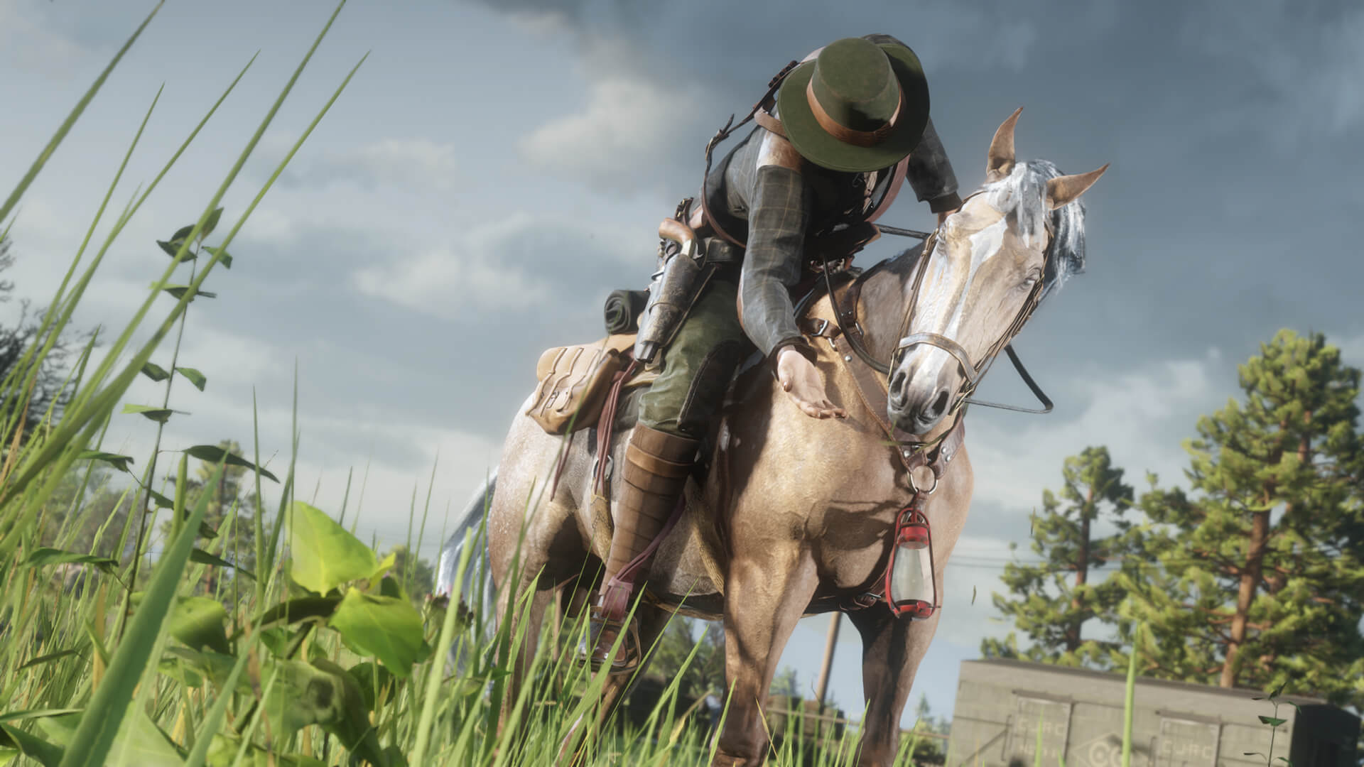 Red Dead Online Roles coleccionista 3