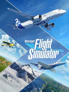 Microsoft Flight Simulator Analisis Cover