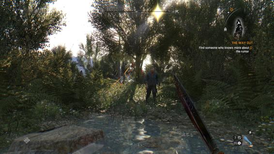 DyingLightGame 2016-01-19 22-15-53-448