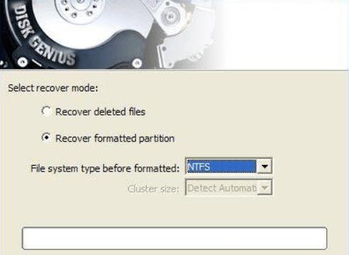 DiskGenius Professional windows