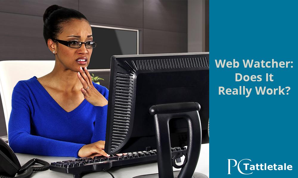 Webwatcher: Does It Really Work? | PC Tattletale Blog : PC