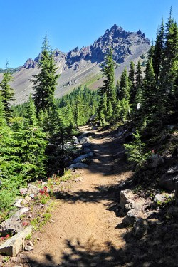 three-fingered-jack-pacific-crest-trail-pct-oregon-robert-barber