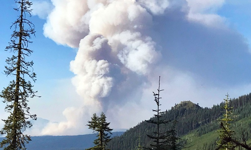 spruce lake fire