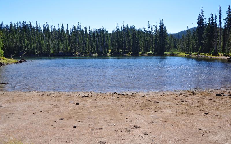 upper lake mount hood national forest oregon