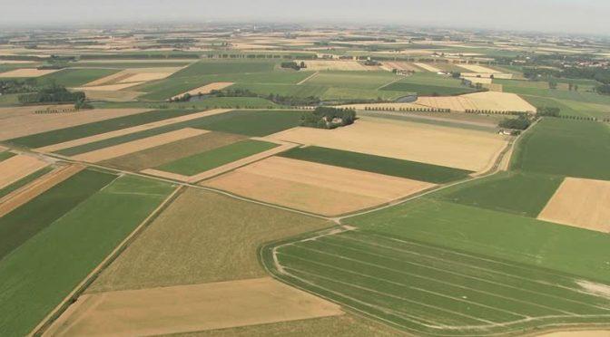 Piano di sviluppo rurale, PD: Regione Lombardia in grave ritardo nella distribuzione delle risorse europee