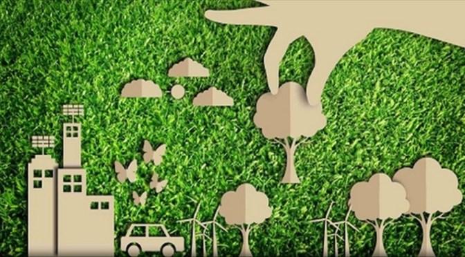Forestazione: un progetto di legge che guarda al futuro