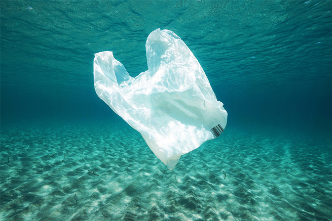 Bio-plastics: a sustainable choice or just a rubbish