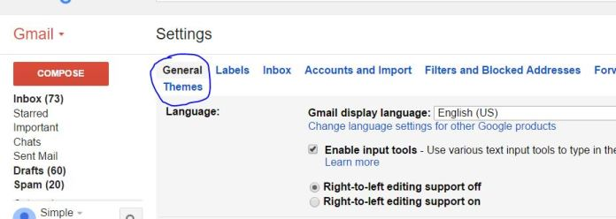 Change default theme of Gmail account and make own picture