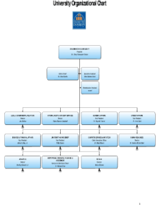 Police organizational charts fillable form also printable ics chart forms and templates rh pdffiller