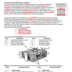Cell Membrane Diagram Blank Viking Ship With Labels Tonicity Worksheet Fill Online Printable Fillable Pdffiller