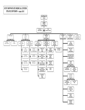 42 Printable Hospital Organizational Chart Forms and