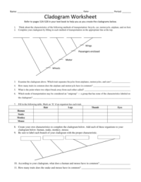 Fillable Online Cladogram Worksheet - Cloudfrontnet Fax ...