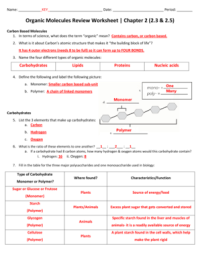 Fillable Online Organic Molecules Review Worksheet Chapter ...