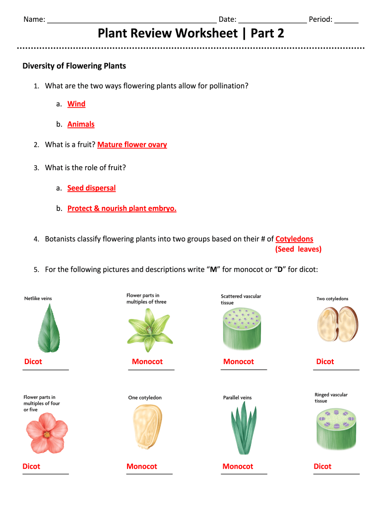 hight resolution of Review Worksheet Part 2 - Fill Online