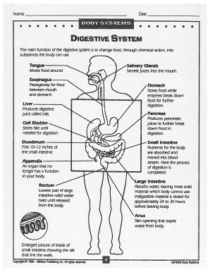 BODY SYSTEMS Fill Online, Printable, Fillable, Blank