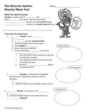 skeletal muscle labeled diagram print wiring for nest thermostat e muscular system edit fill out download