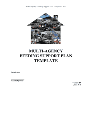 Fillable Online Multi-Agency Feeding Plan Template