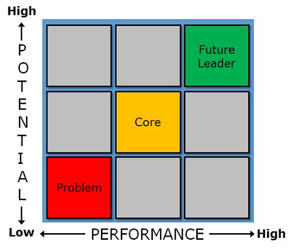 Performance Reviews & 9-Box