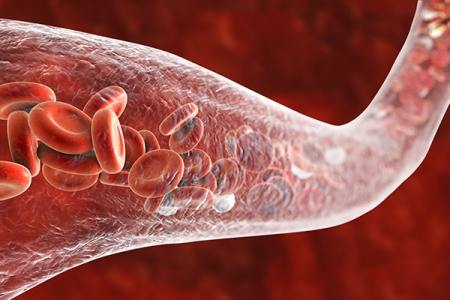 Viasil Opens Up Blood Vessels for Improved Blood Flow