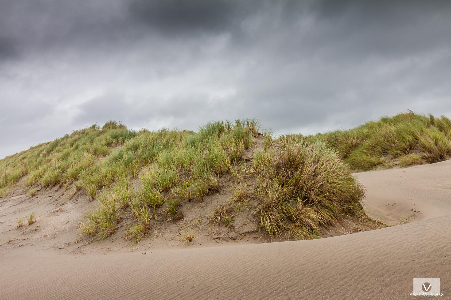 Dune Hoek van Holland