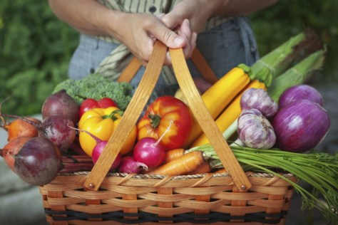 Basket of sustainable food
