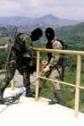 Commando Training