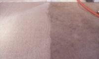 Peaches N Clean Carpet Cleaning Daphne, Mobile, Gulf Shores