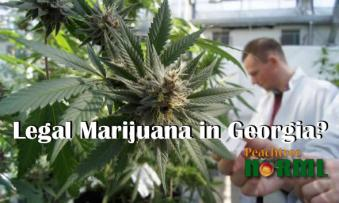 Georgia legalizing marijuana