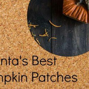 Atlanta's Best Pumpkin Patches – Boo Ya'll