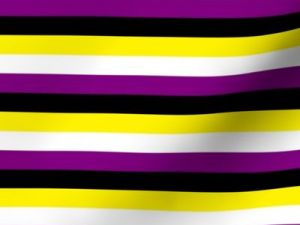 non-binary pride flag fabric, with alternating stripes of yellow, white, purple, and black