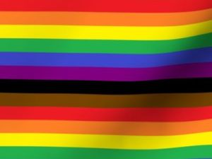 Philadelphia rainbow pride flag fabric, with alternating stripes of black, brown, red, orange, yellow, green, blue, and purple