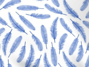 blue feathers on a white background