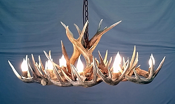 Antler Table Lamp And Antler Floor Lamp Electrical Parts Supply Kit