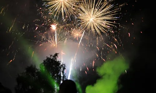 People looking at fireworks bursting over the trees in a night sky