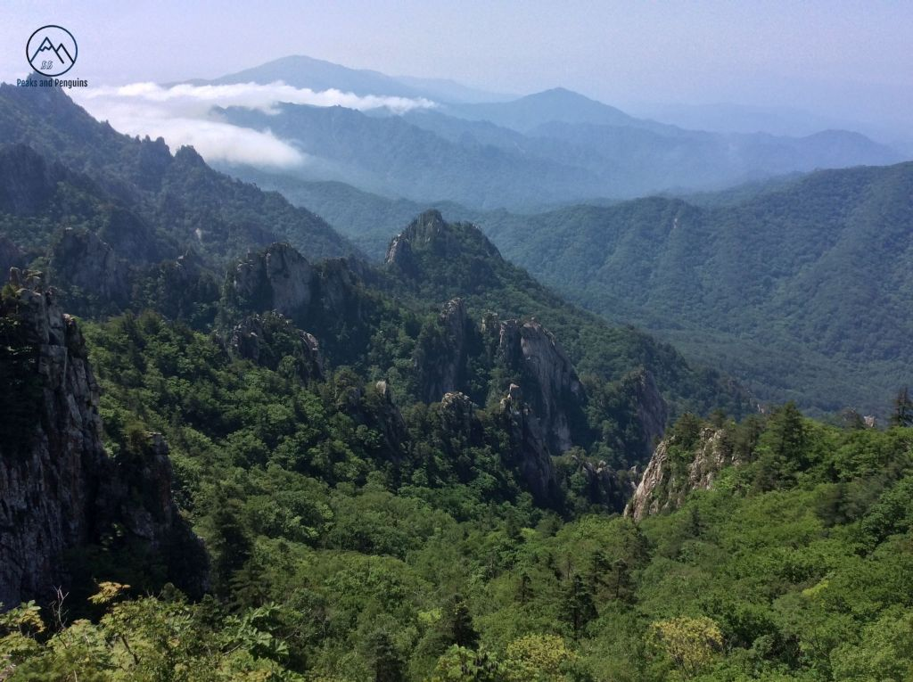 An image of a series of rocky spires piercing through the green forest carpet below the author's viewpoint. Mountain ridges ripple off into the distance. Low white clouds are entering the scene from the top left.