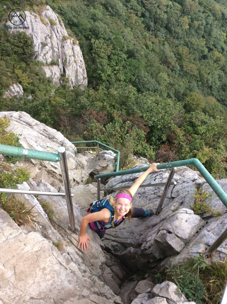 An image of the author mid-ascent. One of her hands grips a railing, and the other hand holds a boulder. One of her feet is visible, braced against the sheer side of another boulder. The top half of the photo shows a dense green forest underneath the steep cliffs of the fifth peak.