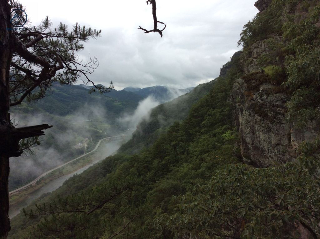 An image taken from a cliffside trail. This image is sliced neatly along the diagonal by the green slope of the mountain. On the left, a cloud rises up from the valley floor. An empty road threads along beside a river that's a deeper shade of slate. Neighboring mountains rise up the sides of the frame. To the right, some sheer rocks protrude from the greenery of the forested mountainside.