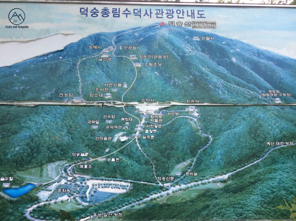 An image of the trails in Deoksan Provincial Park. The park has one main trail leading from a temple at the bottom to the summit at the top, but there are two large loops branching off from the main trail, leading to hermitages and other Buddhist sites in the forest.