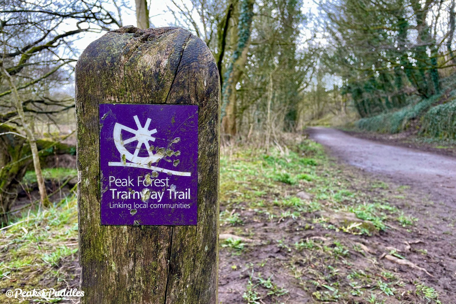 The smart purple signage and interpretation of the trail is beginning to show its age, before the route has even been completed further.