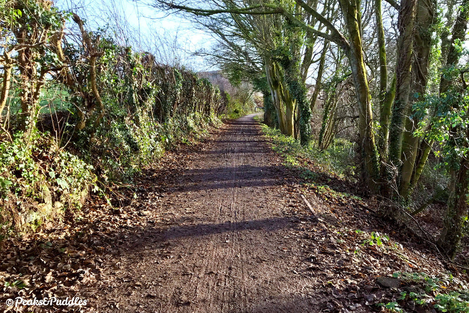 The wooded path approaching Waterside Farm, opposite a water treatment works, has a surface coating of water or wet leaves for much of the year and would be a good candidate for Flexipave.