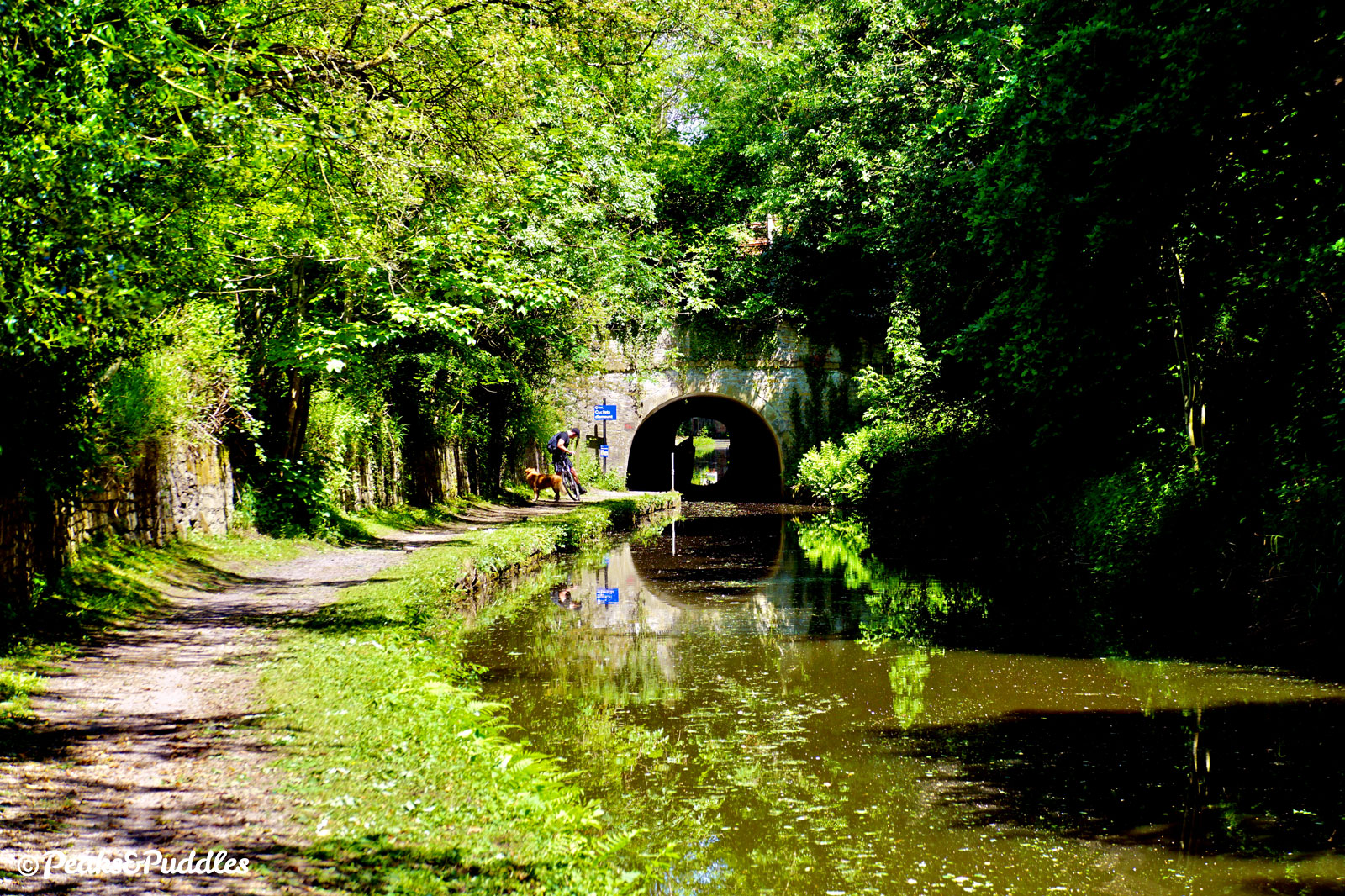Woodley Tunnel is tricky and time-consuming to avoid, requiring steps and a lengthy diversion. Better to just bring a torch and good nerves.