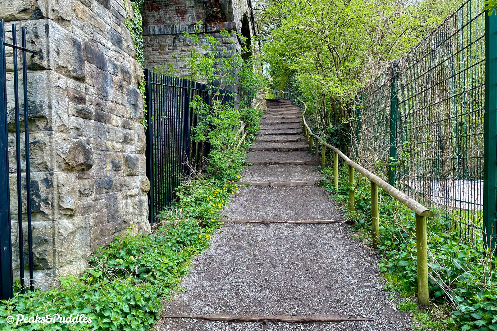 If thinking of joining at Bollington, note that the only access from the main car park is via this long set of steps, with not even a wheeling ramp to help push your bike up.